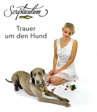 Worte hund gestorben tröstende Hundesprüche zum